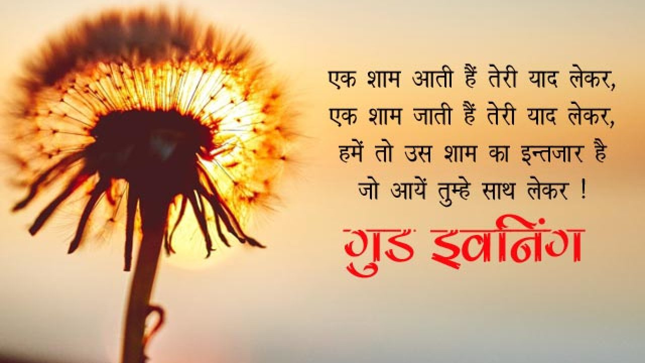 Good Evening Love Sms For Girlfriend In Hindi Bahuma Sticker