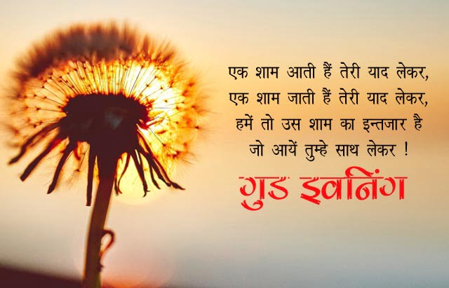 Good Evening Message In Hindi Shayari Sms Quotes Wishes गड