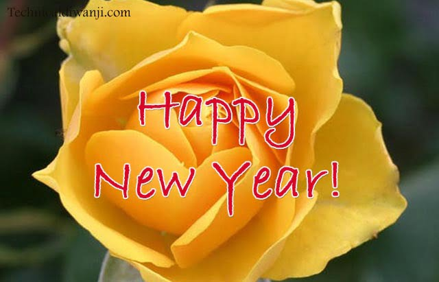 wish u happ new year